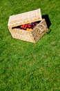 Picnic basket outdoors Royalty Free Stock Photo