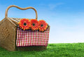 Picnic basket shot in meadow Stock Images