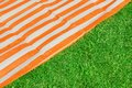Picnic or beach mat on the grass and background Royalty Free Stock Photography