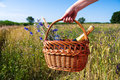 Picnic blanket in landscape in summer time Royalty Free Stock Photography