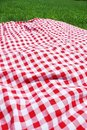 Picnic cloth on meadow. Stock Images