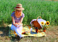 Picnic On The Countryside Royalty Free Stock Photo