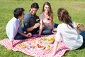 Picnic with friends at park group of happy young on vacation enjoying wine Royalty Free Stock Images