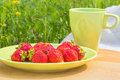 Picnic on the green lawn on a sunny summer day red ripe strawberries plate cup background of grass in garden close Stock Photo