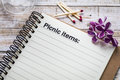 Picnic items list concept Royalty Free Stock Photo