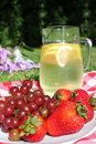 Picnic lemonade Stock Photos