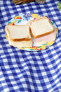 Picnic outdoor food detail on tiled towel Royalty Free Stock Photo