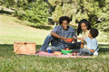 Picnic in park. Royalty Free Stock Photo