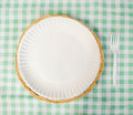 Picnic place setting paper plate plastic fork tablecloth Royalty Free Stock Photo