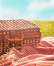 Picnic rug and hamper on a hot summer day wicker standing green field under blue sky for healthy outdoor lifestyle Royalty Free Stock Image