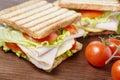 Picnic sandwiches Royalty Free Stock Photo