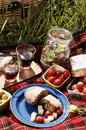 Picnic serie with diffferent sorts of snacks on a blanket Royalty Free Stock Photo