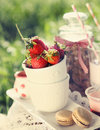 Picnic with strawberry Royalty Free Stock Photography