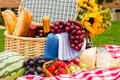 Picnic summer with a basket of food in the park Stock Photography