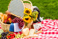 Picnic summer with a basket of food in the park Stock Images