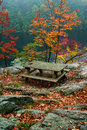 Picnic Table in Fall Stock Image