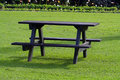 Picnic table on grass Stock Photos