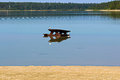 A Picnic Table Placed In Water...