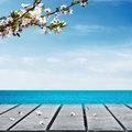 Picnic table and sea near with cherry branch Royalty Free Stock Images