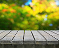 Picnic table on sunny day Stock Photos