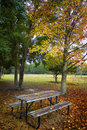 Picnic table under tree Stock Photography