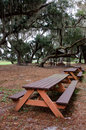 Picnic tables under hanging spanish moss and live oaks a tranquil park on lake istokpoga highlands county florida Royalty Free Stock Photo
