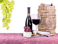 Picnic with wine and food lunch on a red white gingham tablecloth including a bread cheese grapes Royalty Free Stock Images