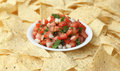 Pico de gallo a bowl of salsa fresca surrounded by tortilla chips Royalty Free Stock Images
