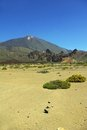 Pico del Teide - vertical Stock Photo