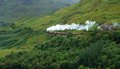 Pictorial steam train in scotland fantastic green vegetation around the jacobite near glenfinnan Royalty Free Stock Photo