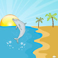 Picture dolphin jumping Royalty Free Stock Photo