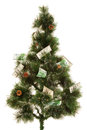 Picture of fir tree with a lot of money green dollars and euro Stock Images