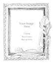 Picture frame flower pencil sketch natural art line star freehand by my idea is no have original reference black and white color Royalty Free Stock Image