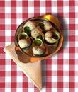 Escargot, French delicacy Royalty Free Stock Photo