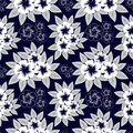 On a picture a navy blue pattern with white flowers is presented Royalty Free Stock Photos