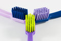 Picture of tooth brushes Royalty Free Stock Photo