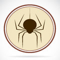 Pictures of brown spiders vector illustrations Stock Image