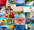 Pictures of holiday mosaic with snapshots uploaded to social networking services Stock Photo