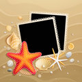 Pictures, shells and starfishes on sand background Royalty Free Stock Photography