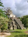 Pictures of the Tikal ruins, ancient Mayan ruins in rainforests of northern Guatemala.