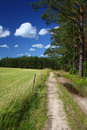 Picturesque country road and field Royalty Free Stock Images