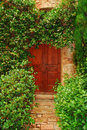 Picturesque door Royalty Free Stock Images