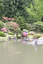 Picturesque japanese garden beautiful flowers trees and pond in seattle Royalty Free Stock Photo