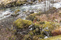 Picturesque moss on the rocks of a mountain river norway Stock Images