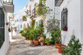 Picturesque narrow street decorated with plants Royalty Free Stock Photo