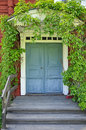 Picturesque old door Royalty Free Stock Images