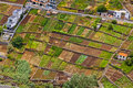 Picturesque rural landscape of Madeira island Royalty Free Stock Photo