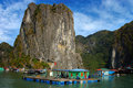 Picturesque sea landscape. Ha Long Bay,  Vietnam Stock Photo