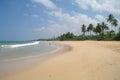Picturesque tropical beach sri lanka Royalty Free Stock Photo