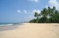 Picturesque tropical beach sri lanka Stock Photography